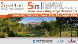 Workshop Expert'Labs SIM III: Surfaces et Interfaces dans les Matériaux