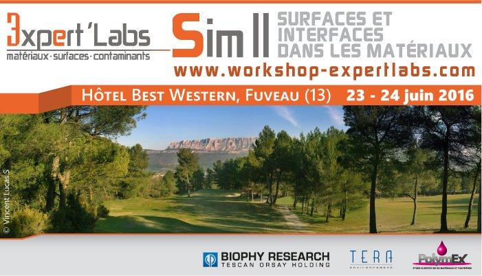 Workshop SIM III, Surfaces et interfaces dans les matériaux
