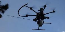 CDSI Drone Chenilles processionnaires