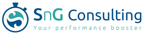 sng consulting